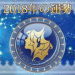 2018年の運勢 - ふたご座