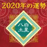 2020年の運勢 - 八白土星