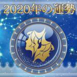 2020年の運勢 - ふたご座