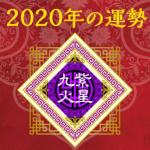 2020年の運勢 - 九紫火星