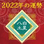 2022年八白土星