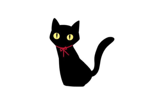 猫系男子の特徴