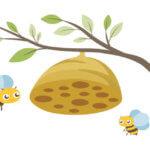 蜂の巣と蜂
