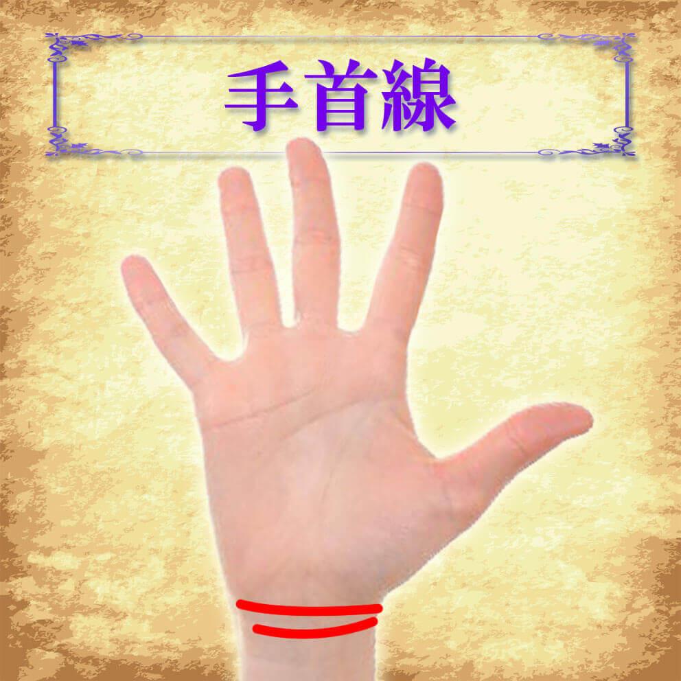 手首線の位置