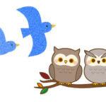 小鳥系男子の特徴
