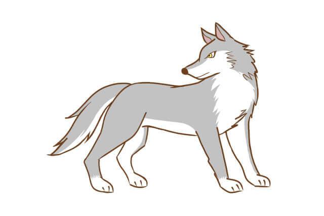 オオカミ系男子の特徴